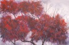 cime rosse (80 x 120cm) acrylique 2011